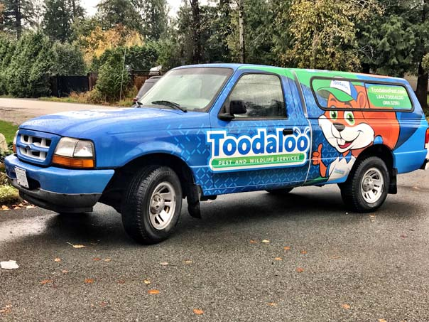 Toodaloo Pest and Wildlife Services full truck wrap
