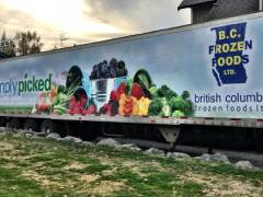 frozen foods truck wrap