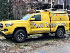 pest detective work truck wrap