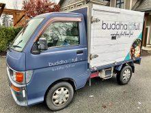 buddha full van wrap